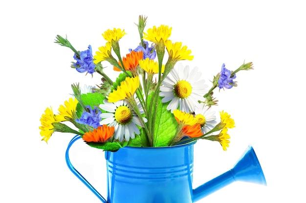 Buquê de flores silvestres coloridas em um regador. conceito de primavera e jardinagem.