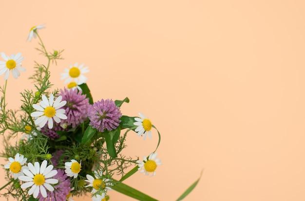 Buquê de flores silvestres de trevo e camomila close-up contra um fundo de pêssego.