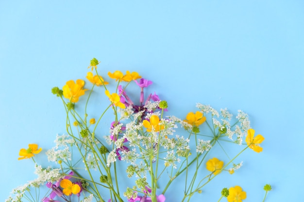Buquê de flores silvestres na parede azul