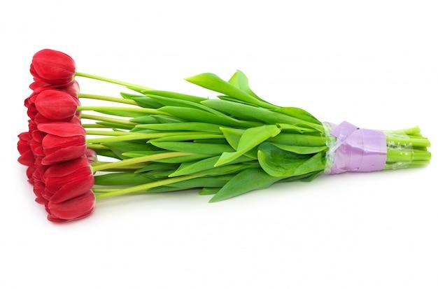 Buquê de flores tulipas isolado no branco