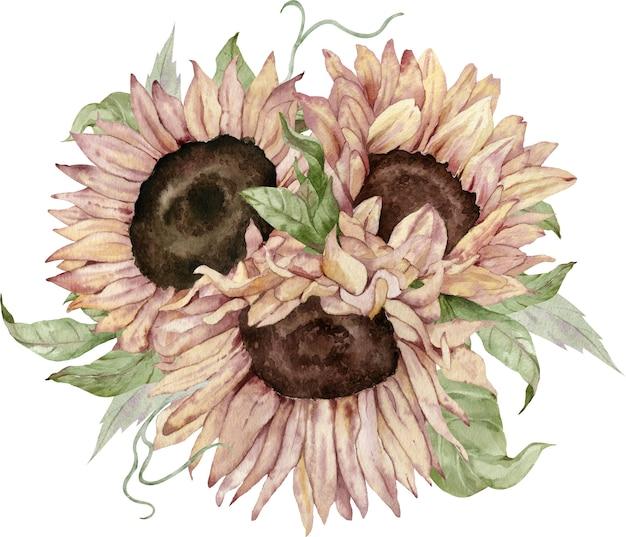 Buquê de girassol em aquarela. decoração do feriado de outono e ação de graças.