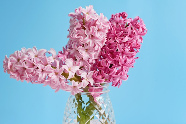 Buquê de jacinto de flores de primavera em vaso de vidro.