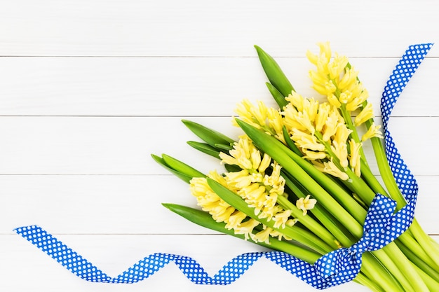 Buquê de jacintos amarelos, decorados com fita azul sobre fundo branco de madeira