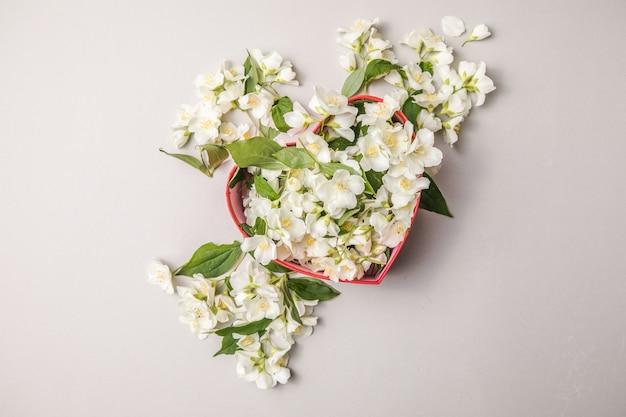 Buquê de jasmim em caixa de presente flores do dia dos namorados parabéns moldura decorativa