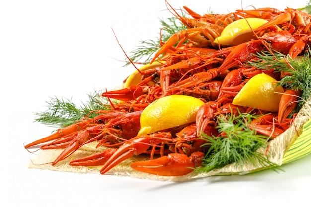 Buquê de lagosta cozida vermelha brilhante com endro e limão