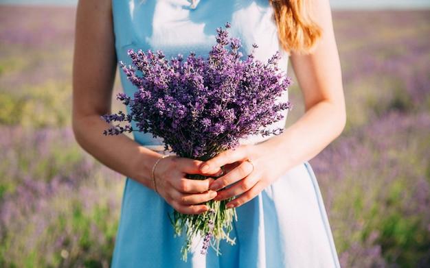 Buquê de lavanda nas mãos de uma menina em um vestido azul