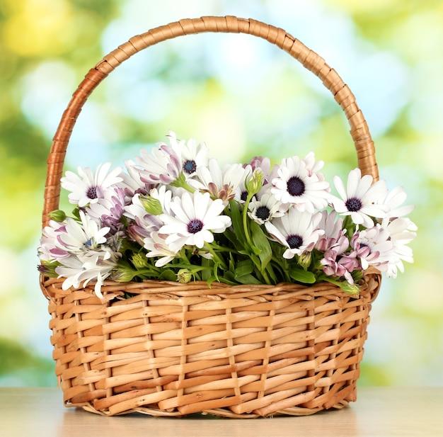 Buquê de lindas flores de verão na cesta, sobre fundo verde