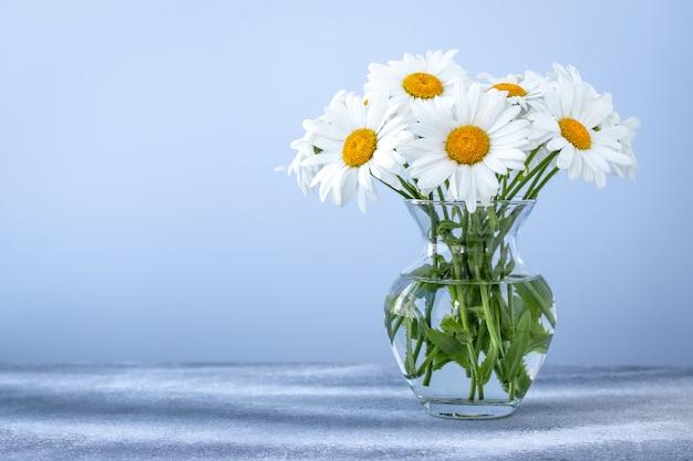 Buquê de margaridas em um vaso de vidro. lugar vazio para texto. cartão de presente floral com camomila.