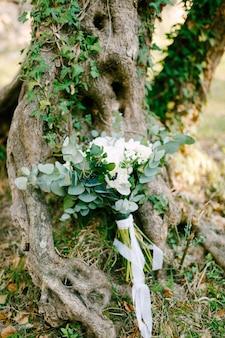 Buquê de noiva com ramos de rosas brancas de aronia de eucalipto e fitas brancas perto da árvore