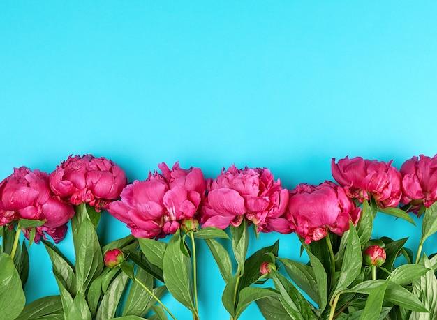 Buquê de peônias vermelhas com folhas verdes no azul