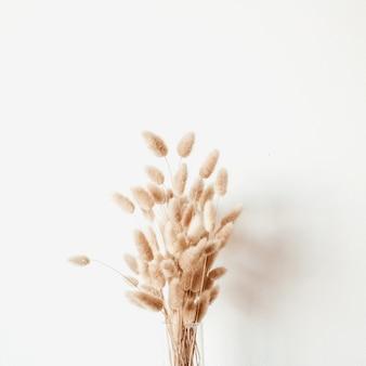 Buquê de plantas fofas em um vaso de vidro branco