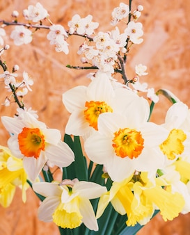 Buquê de primavera de flores de narciso e galhos de uma árvore de fruto close-up