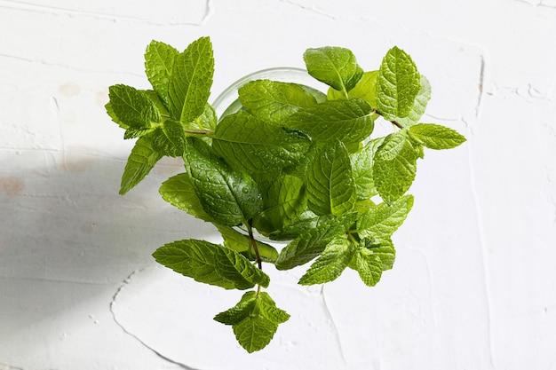 Buquê de ramos e folhas de hortelã fresca (hortelã-pimenta), recém-cortada com gotas de água em um copo