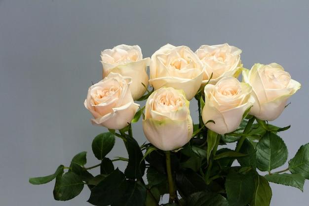 Buquê de rosas brancas, cartão ou conceito