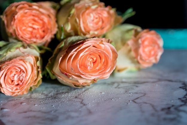 Buquê de rosas peônia. flores de coral, fundo floral. delicado buquê de rosas laranjas. present