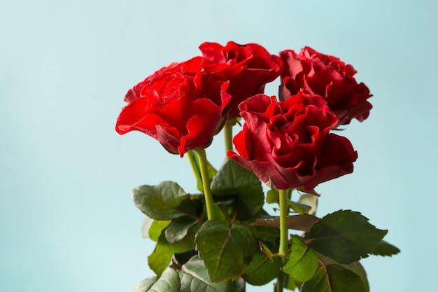 Buquê de rosas vermelhas em azul