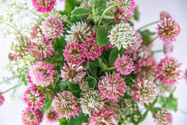 Buquê de trevo rosa flores fundo floral
