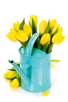 Buquê de tulipas amarelas frescas em fundo branco