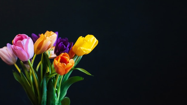 Buquê de tulipas brilhantes coloridas sobre um fundo escuro com uma cópia do espaço