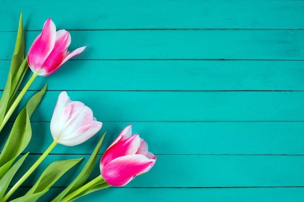 Buquê de tulipas coloridas sobre fundo azul de madeira.