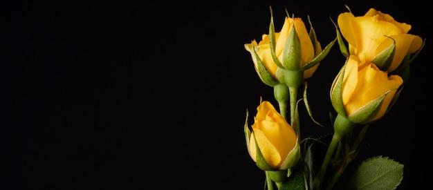 Buquê de tulipas com cópia-espaço