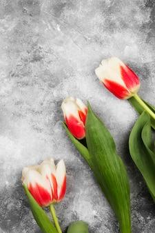 Buquê de tulipas cor de rosa brancas sobre um fundo cinza. vista superior, espaço de cópia