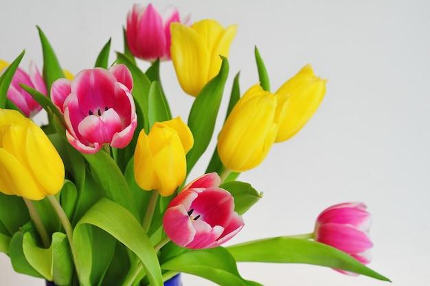 Buquê de tulipas cor de rosa e amarelas. fundo de primavera.