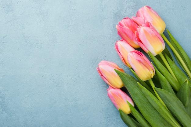 Buquê de tulipas de espaço para texto