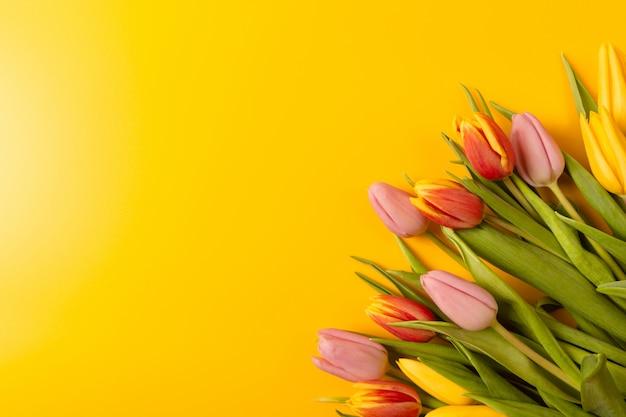 Buquê de tulipas em um fundo amarelo. vista plana leiga, superior com copyspace.