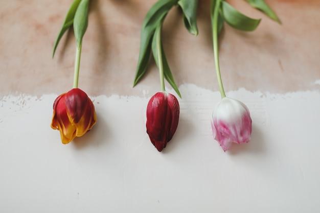 Buquê de tulipas em uma mesa de madeira rústica. fundo do conceito de férias da primavera