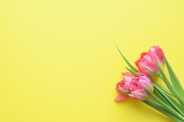 Buquê de tulipas rosa primavera em uma parede amarela. estilo simples de vista superior.