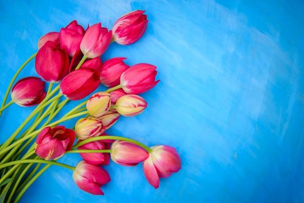 Buquê de tulipas vermelhas e rosa em um fundo azul, espaço de cópia, para design de cartão
