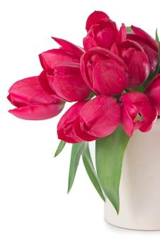 Buquê de tulipas vermelhas em uma superfície branca