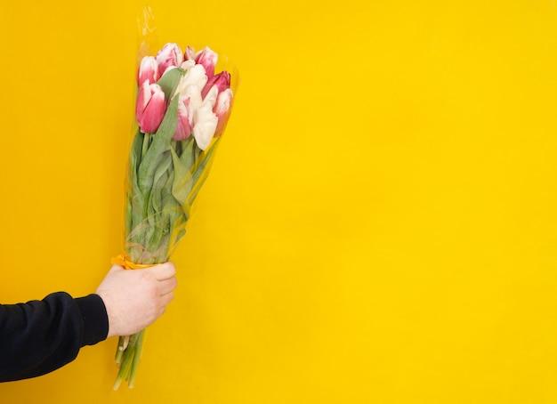 Buquê de tulipas vermelhas na mão e copyspace amarelo