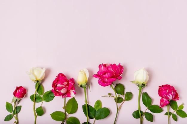 Buquê de vista superior de rosas vermelhas e brancas
