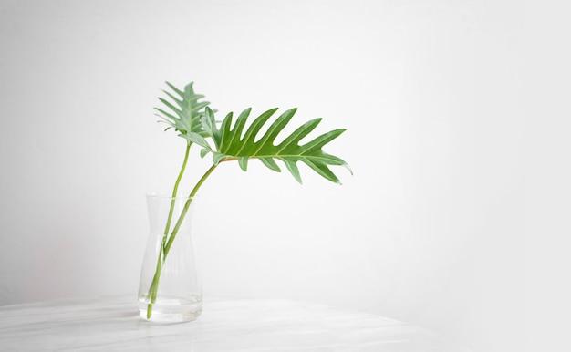 Buquê mínimo de folha verde em vaso na mesa