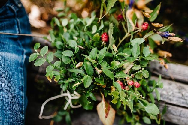 Buquê verde de amoras, framboesas, mirtilos. grama de campo. folhas pequenas.