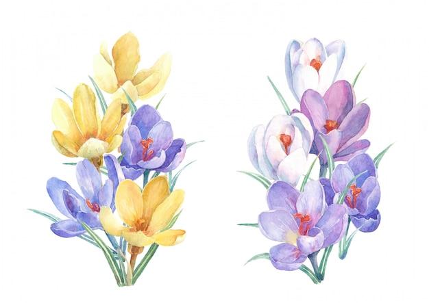 Buquês de flores em aquarela de primavera