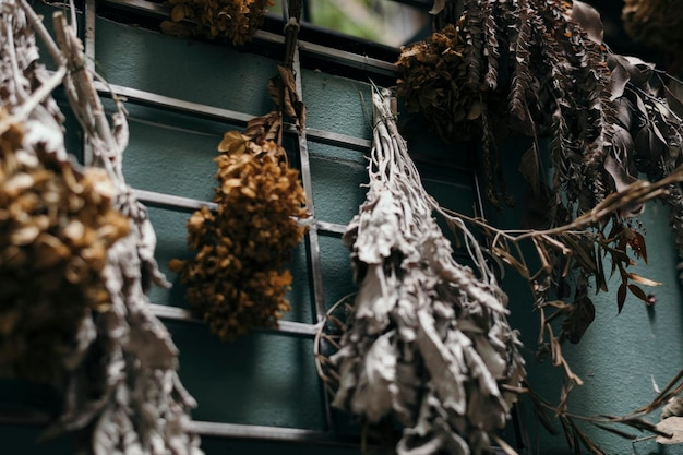 Buquês de folhas secas pendurados em uma parede azul