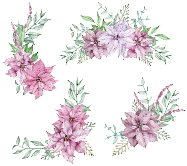 Buquês de natal em aquarela com ramos de poinsétia e eucalipto rosa. vegetação de férias feliz isolada no fundo branco. lindos arranjos florais.