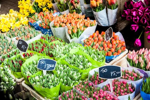 Buquês de tulipas no mercado de flores na cidade de amsterdã, holanda