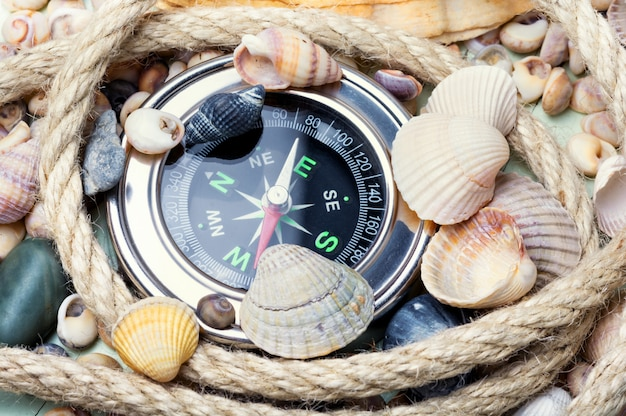 Bússola do mar e conchas do mar