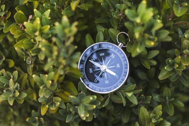 Bússola vintage em arbusto na folhagem verde na natureza. imagem abstrata. equipamento para caminhantes. indústria de viagens e recreação. ache o caminho.