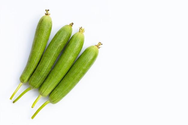 Cabaça de esponja verde fresca ou testa em fundo branco.