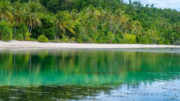 Cabana de água de uma casa de família na ilha de monsuar. maré baixa. raja ampat, indonésia, papua ocidental.