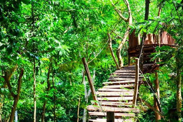 Cabana de madeira e ponte log foi construído na floresta para a atividade de aventura de olheiro