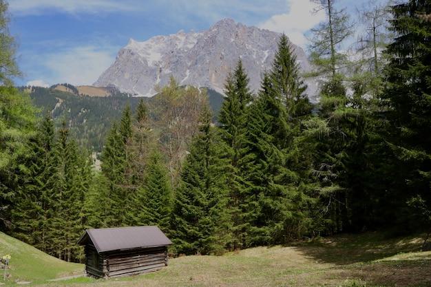 Cabana de madeira em um terreno verde cercado por belas árvores verdes e altas montanhas rochosas