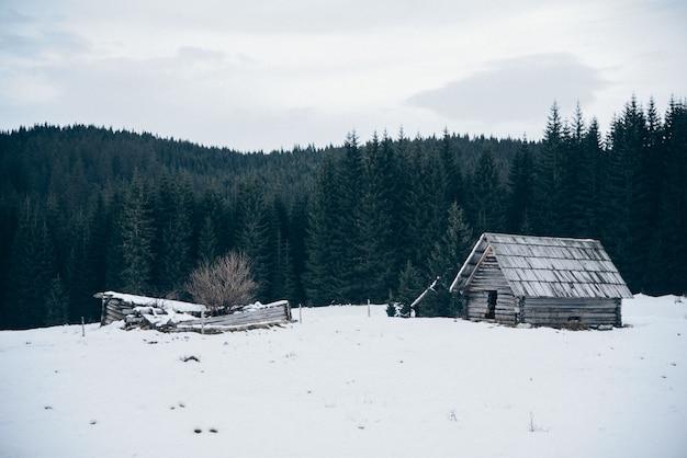 Cabana de madeira no campo coberto de neve