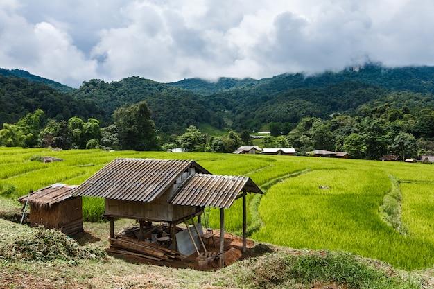 Cabana na aldeia das montanhas com campo de arroz escada