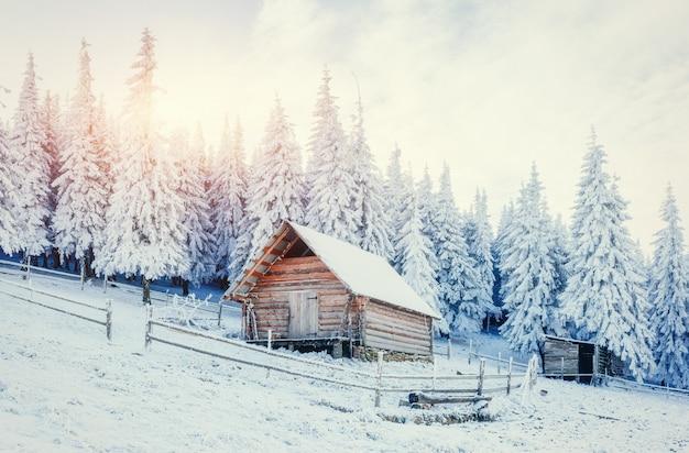 Cabana nas montanhas no inverno. cárpatos, ucrânia, europa